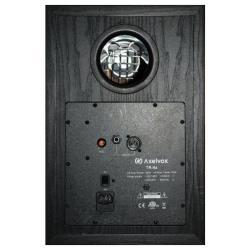 Полочная акустическая система Axelvox TR-8A