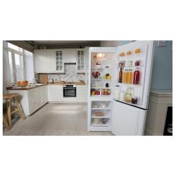 Холодильник Indesit DSN 18