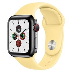 Умные часы Apple Watch Series 5 GPS + Cellular 40мм Stainless Steel Case with Sport Band